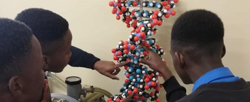 Biochemie (2).jpg
