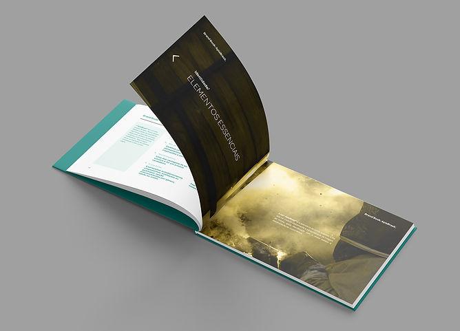 Brandbook Apis 5.jpg