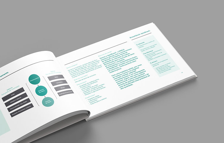 Brandbook Apis 4-4.jpg