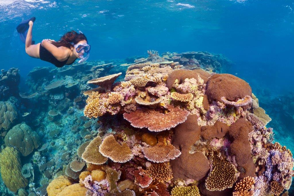 CNS Great Barrier Reef (002)