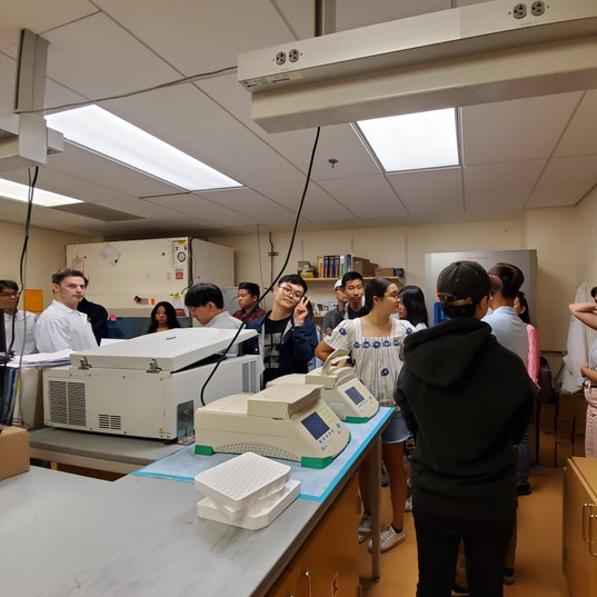 Biology Lab at UCSF Medical Center