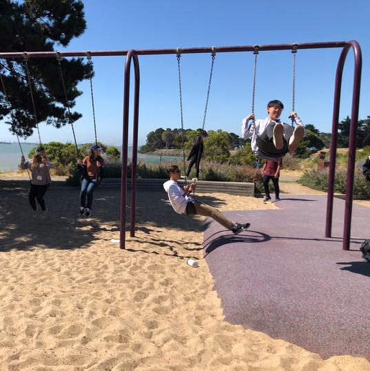 Shorebird Park