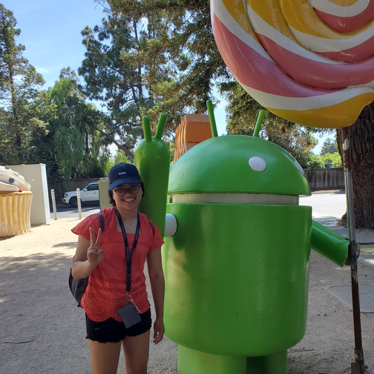 Google Android Lawn Statues