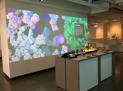 Autodesk Gallery