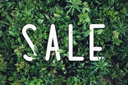Sale discount design background with green leaves. Summer _Spring sale banner..jpg