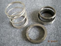 Seal_Ring3-DSCN2595-300x2251.jpg