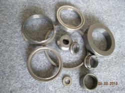 Seal_Ring4DSCN2631-300x2251.jpg