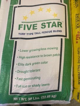 Five Star Fescue