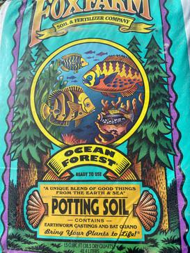 Ocean Forest Potting Soil