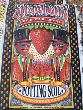 Strawberry Fields Potting Soil