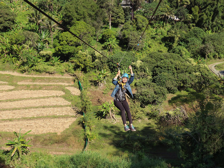Solo Backpacking Diaries in Chiang Mai - 4 Days Itinerary and Guide