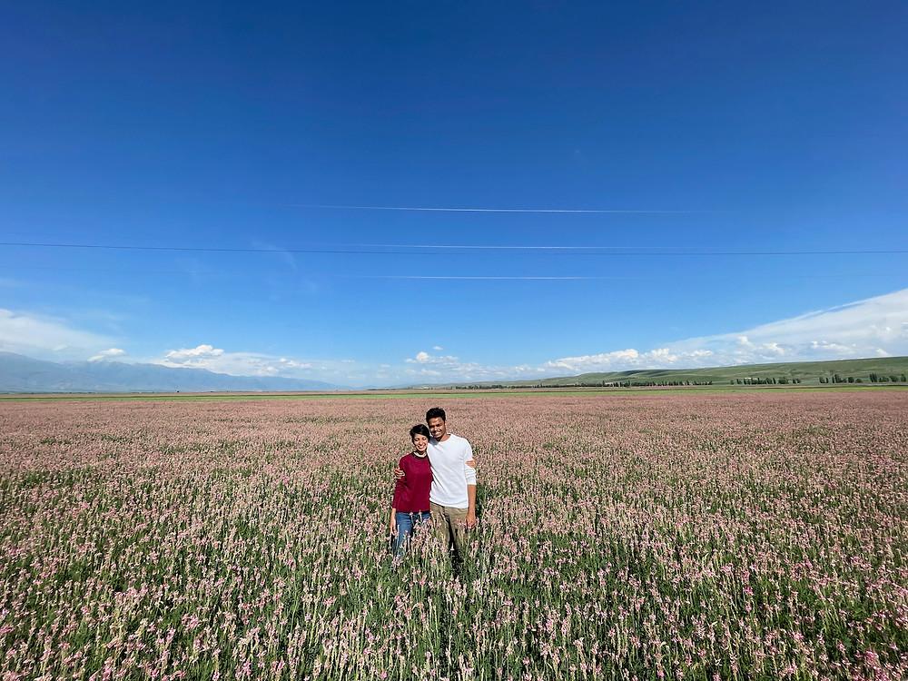 Issyk Kul Lake Kyrgyzstan Flower Fields