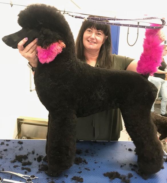 Winnie's first Poodle workshop.