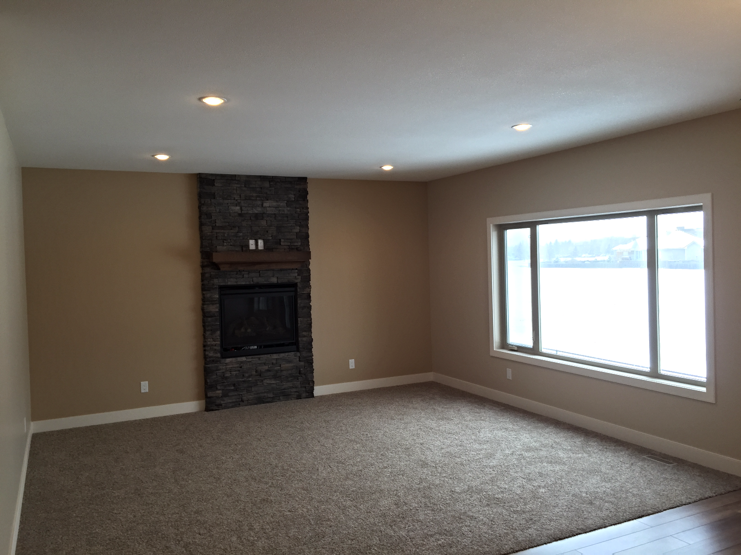 Living Area w/ Gas Fireplace