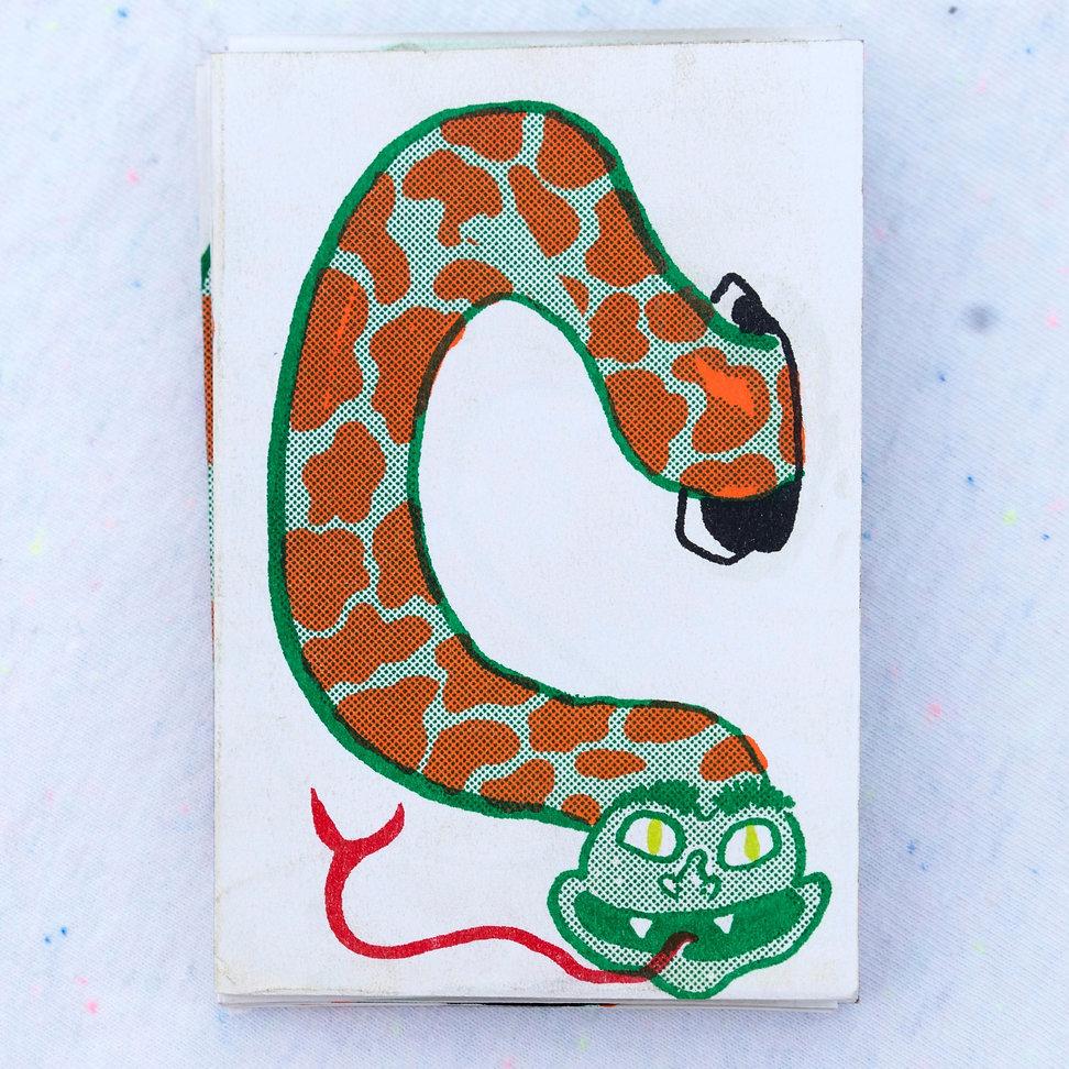 Paper Snake Cover