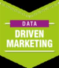 DATA DRIVEN MARKETING.png