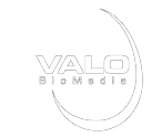 LOGO VALO.png