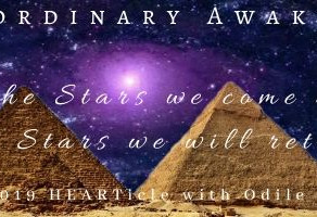 From the Stars we come and to the Stars we will return