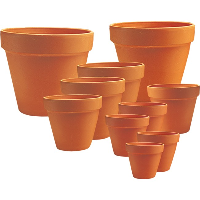Standard Clay Pot
