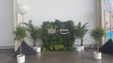 plant rental whole foods amazon prime