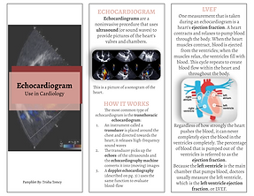 Echocardiogram_ Use in Cardiology.png