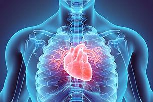 me_cardiology.jpg