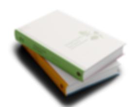 Book_Mockup_2-2.png