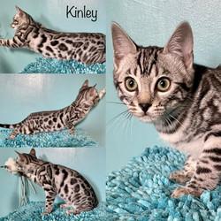 Kinley 14 weeks