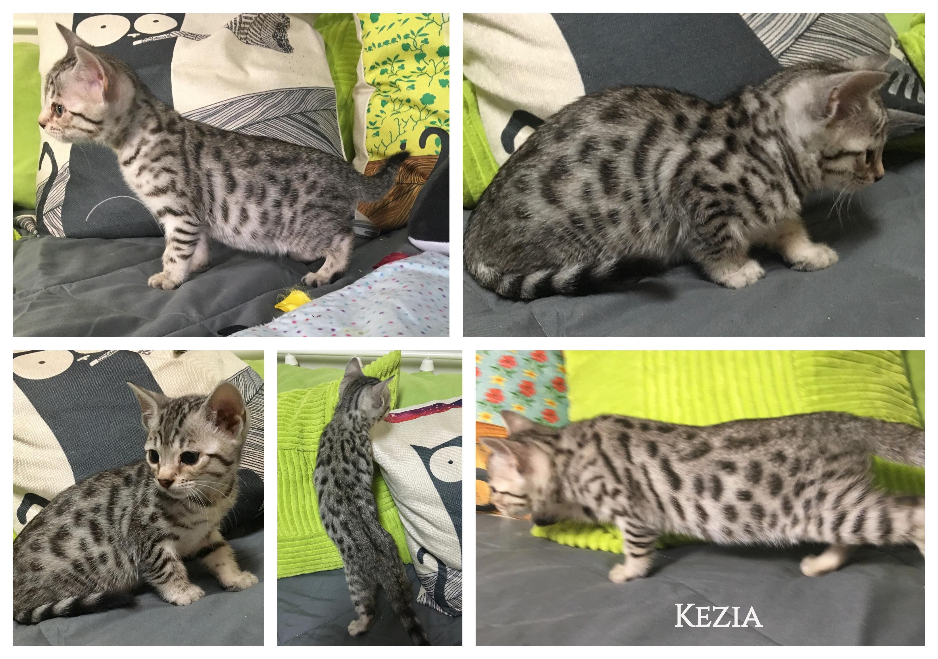 Kezia 8 weeks