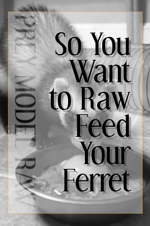 So You Want to Raw Feed Your Ferret