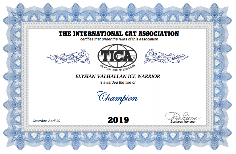 Champion Title