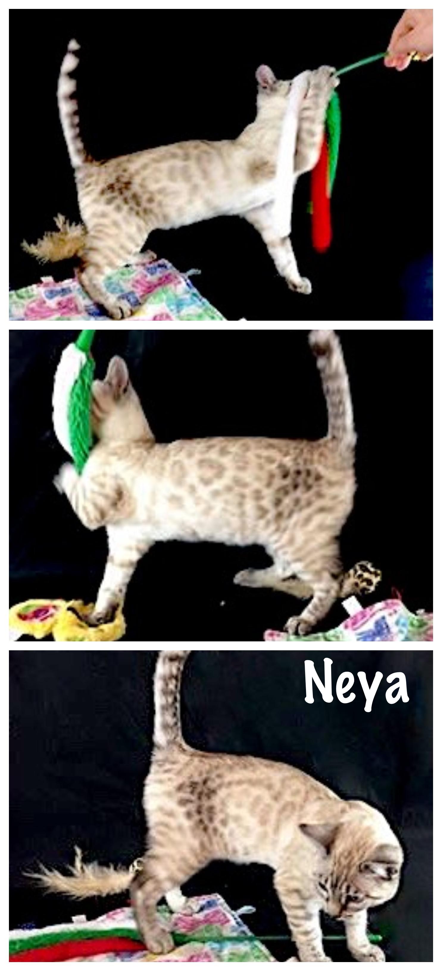 Neya 14 weeks