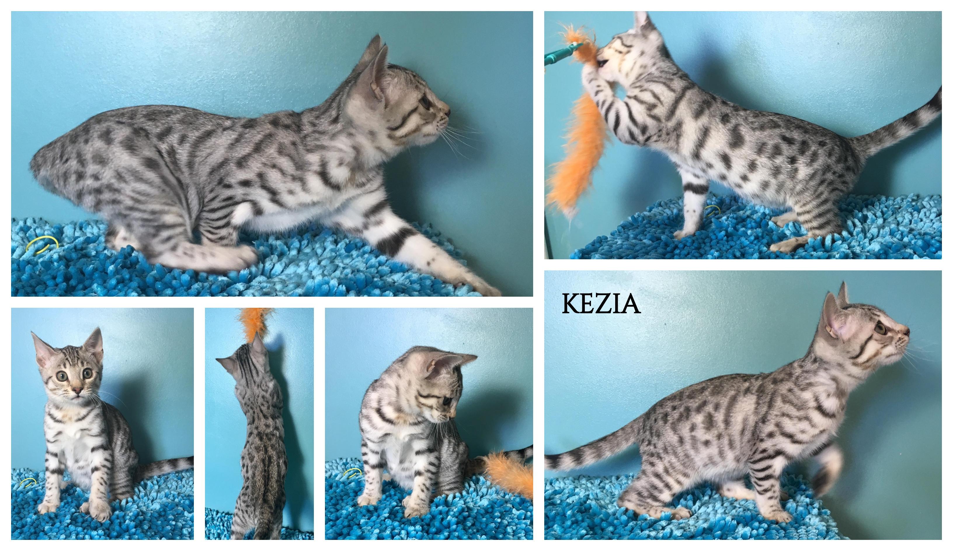 Kezia 12 weeks