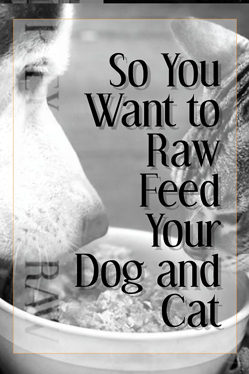 So You Want to Raw Feed Your Dog and Cat