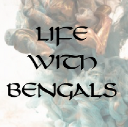 Life with Bengals