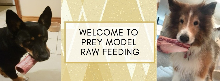 Prey Model Raw (The Nutrition Code) facebook group