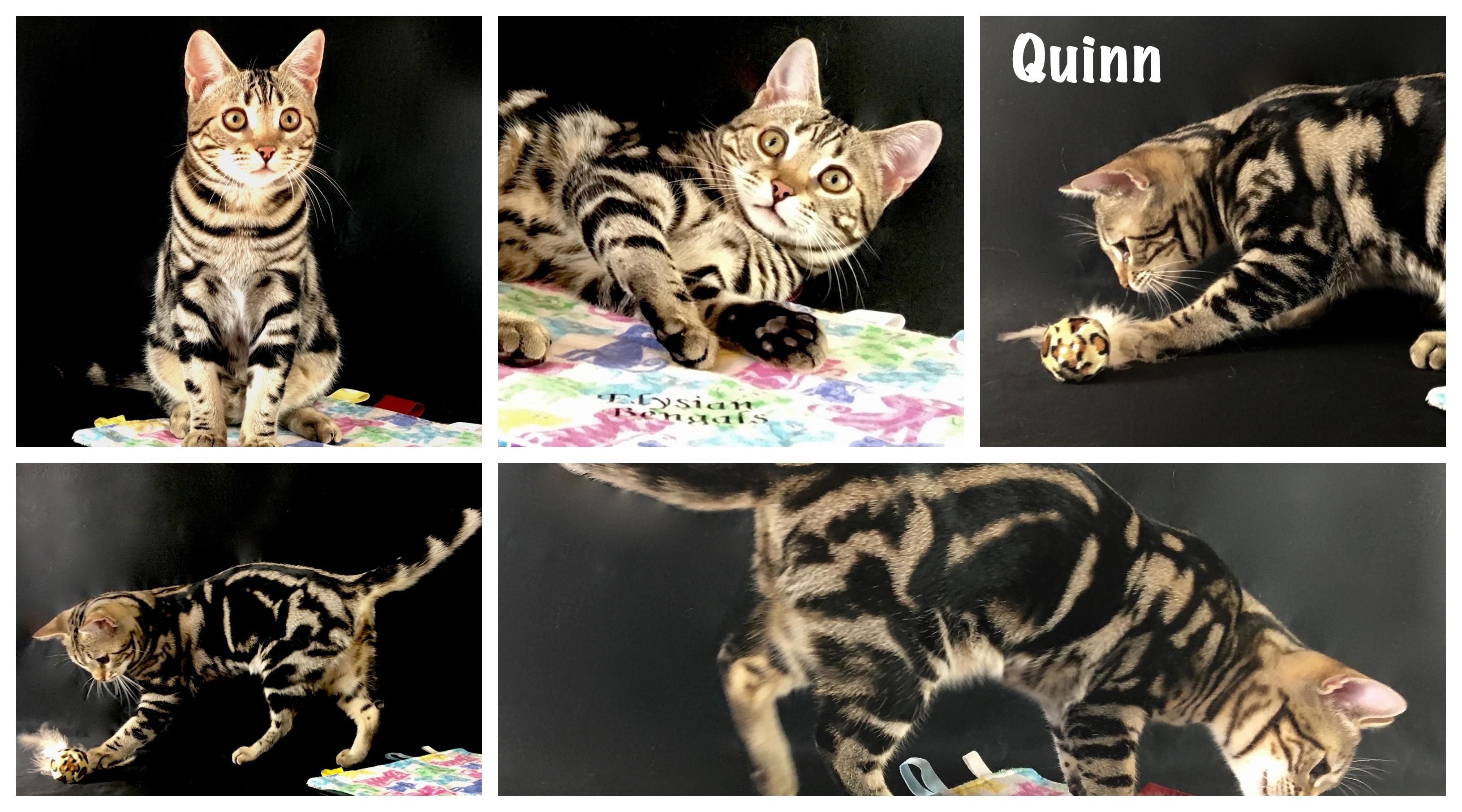 Quinn 23 weeks