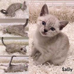 Sally 6 weeks