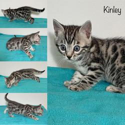 Kinley 5 weeks