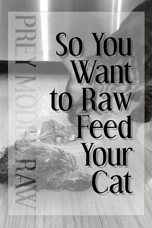 So You Want to Raw Feed Your Cat