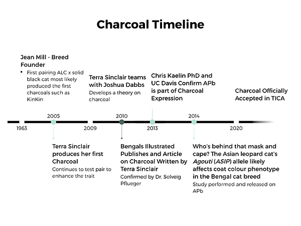 Charcoal Timeline.png