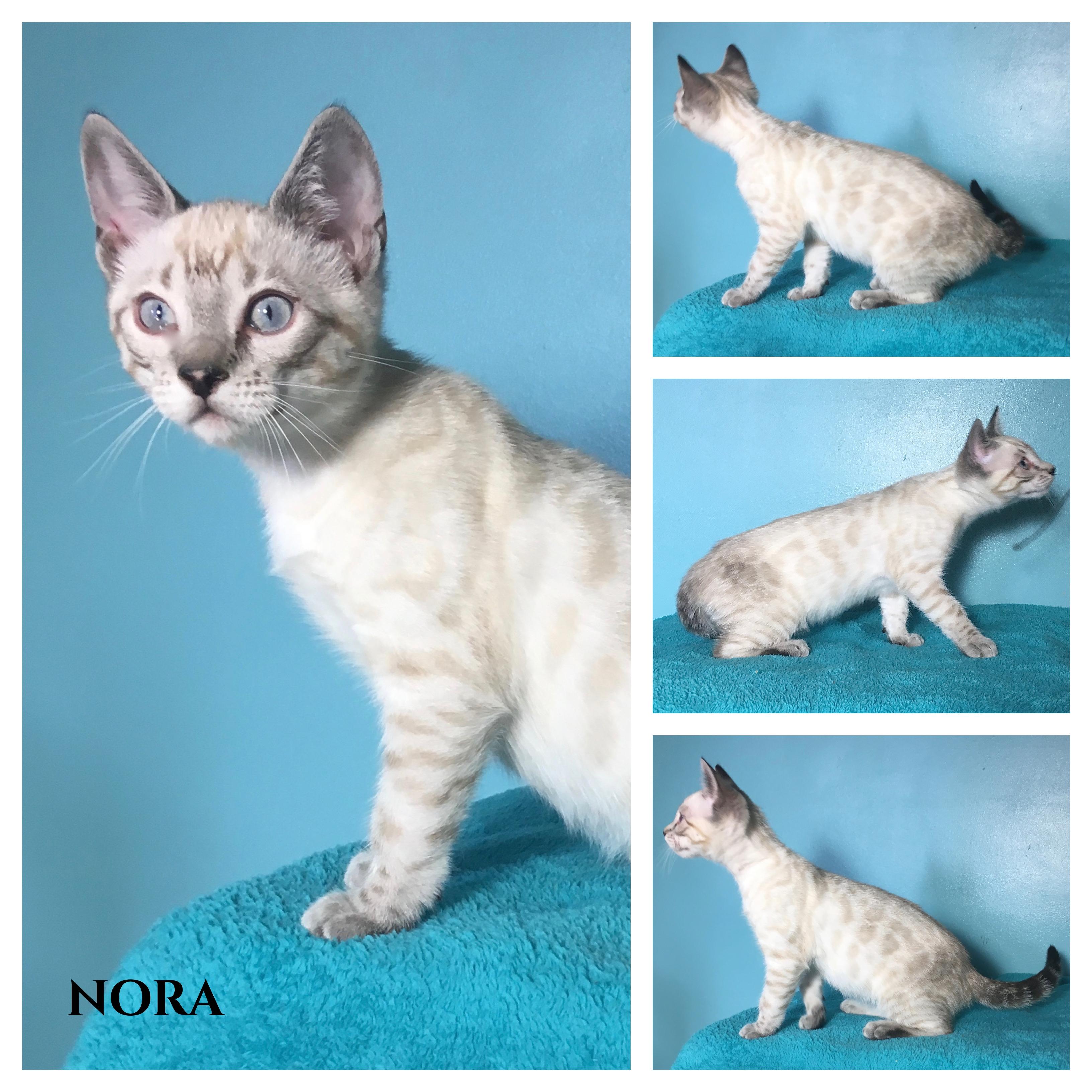 Nora 14 weeks