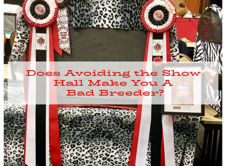 Does Avoiding the Show Hall Make You A Bad Breeder?