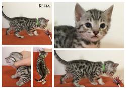 Kezia 5 weeks