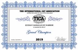 Grand Champion Title