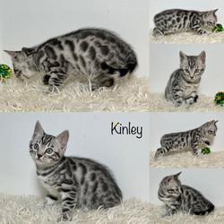 Kinley 7 weeks