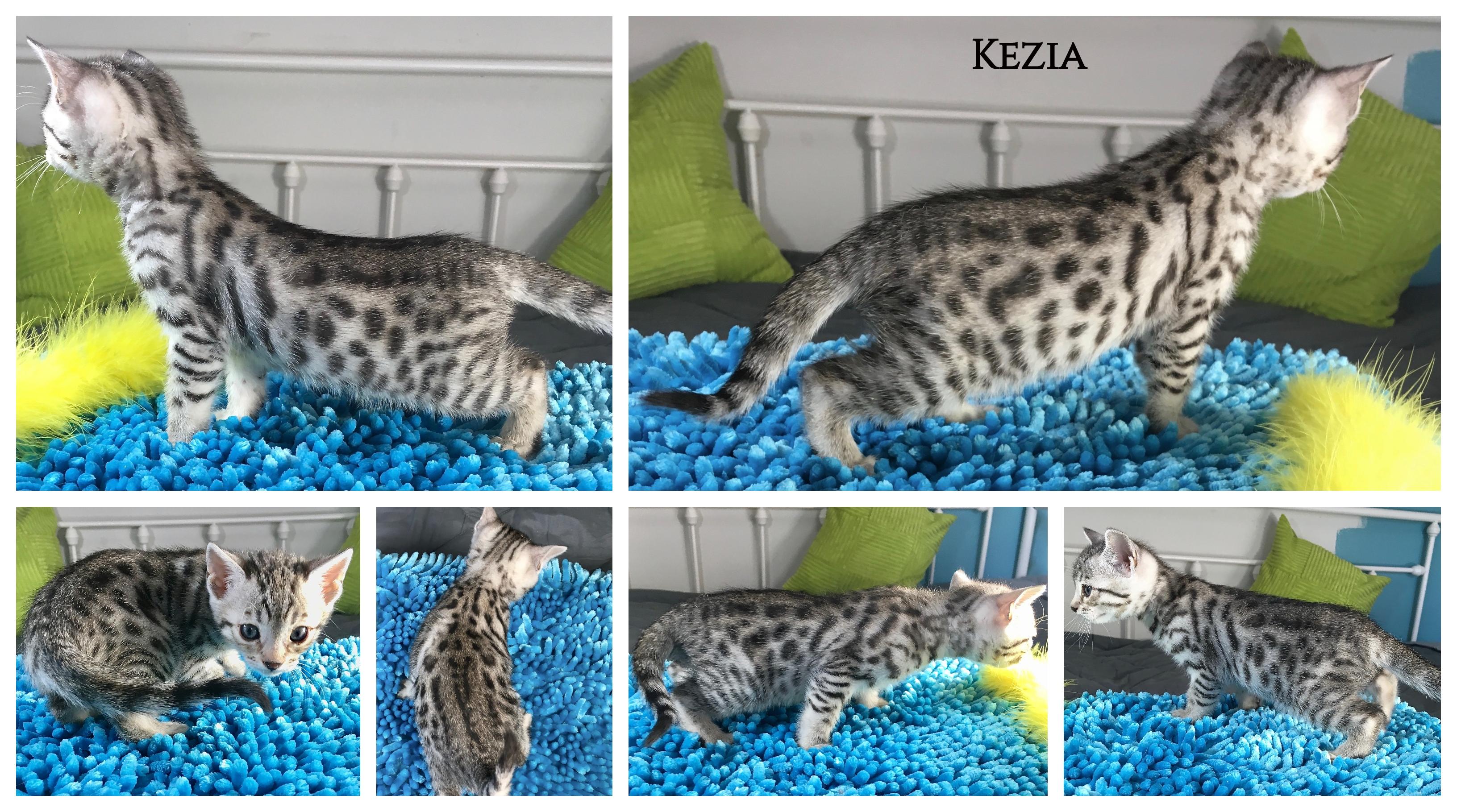 Kezia 6 weeks