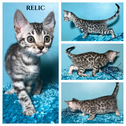 Relic 9 weeks