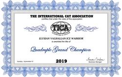 Quadruple Grand Champion Title