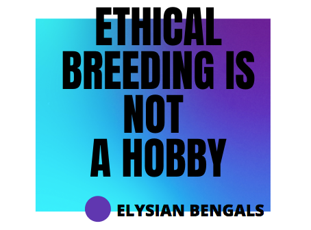 Ethical Breeding is NOT a Hobby